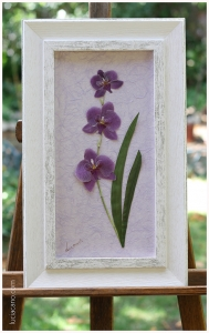 orquidea-phalaenopsis_secar_ramo_novia_lucia-cano