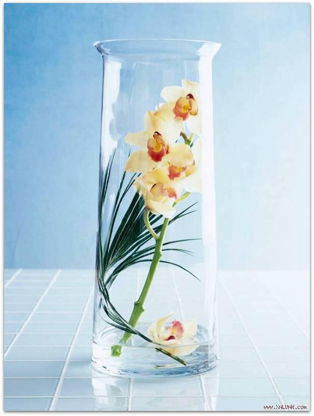 Como hacer centro mesa flores naturales primavera facil 6 for Como hacer un centro de mesa facil