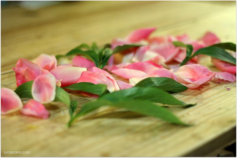 Descubre como conservar un ramo de novia de peonias