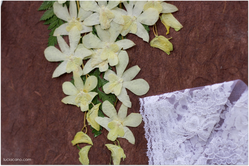 Descubre como secar un ramo de novia y personaliza tu cuadro