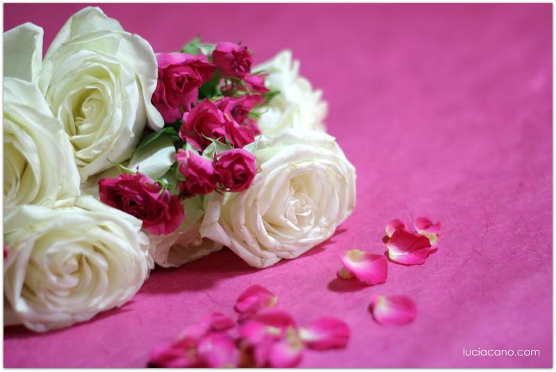 Descubre como conservar un ramo de novia de rosas rosas y blancas