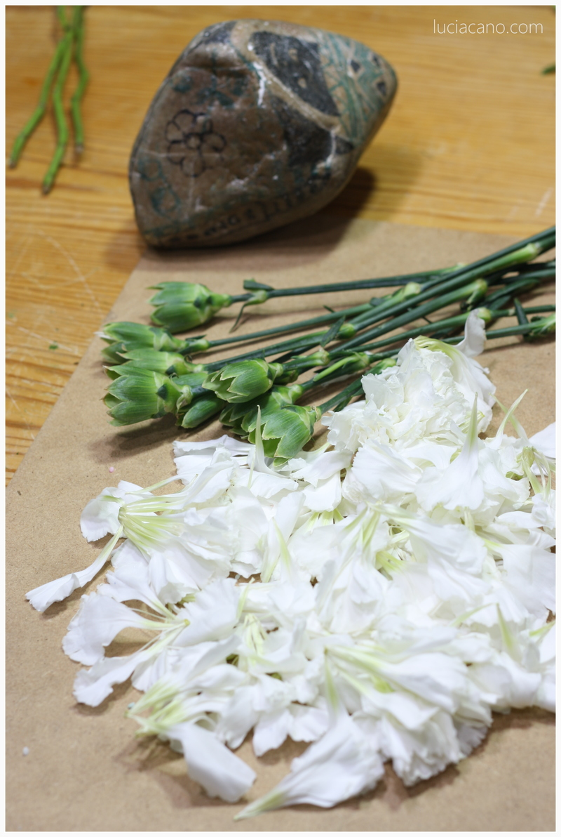 Descubre como conservar un ramo de flores naturales de claves
