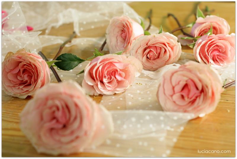 Descubre Cómo Conservar El Ramo De Novia Para Siempre Flores Para Siempre Lucia Cano